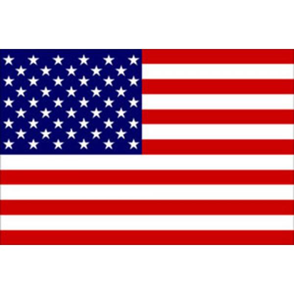 Adria Bandiere-FNI5252409-BANDIERA USA CM.20X30-30
